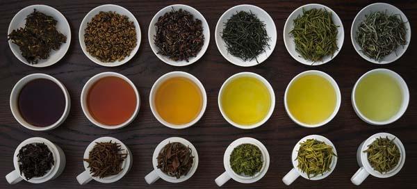 Các loại trà sử dụng cho nguyên liệu làm trà sữa
